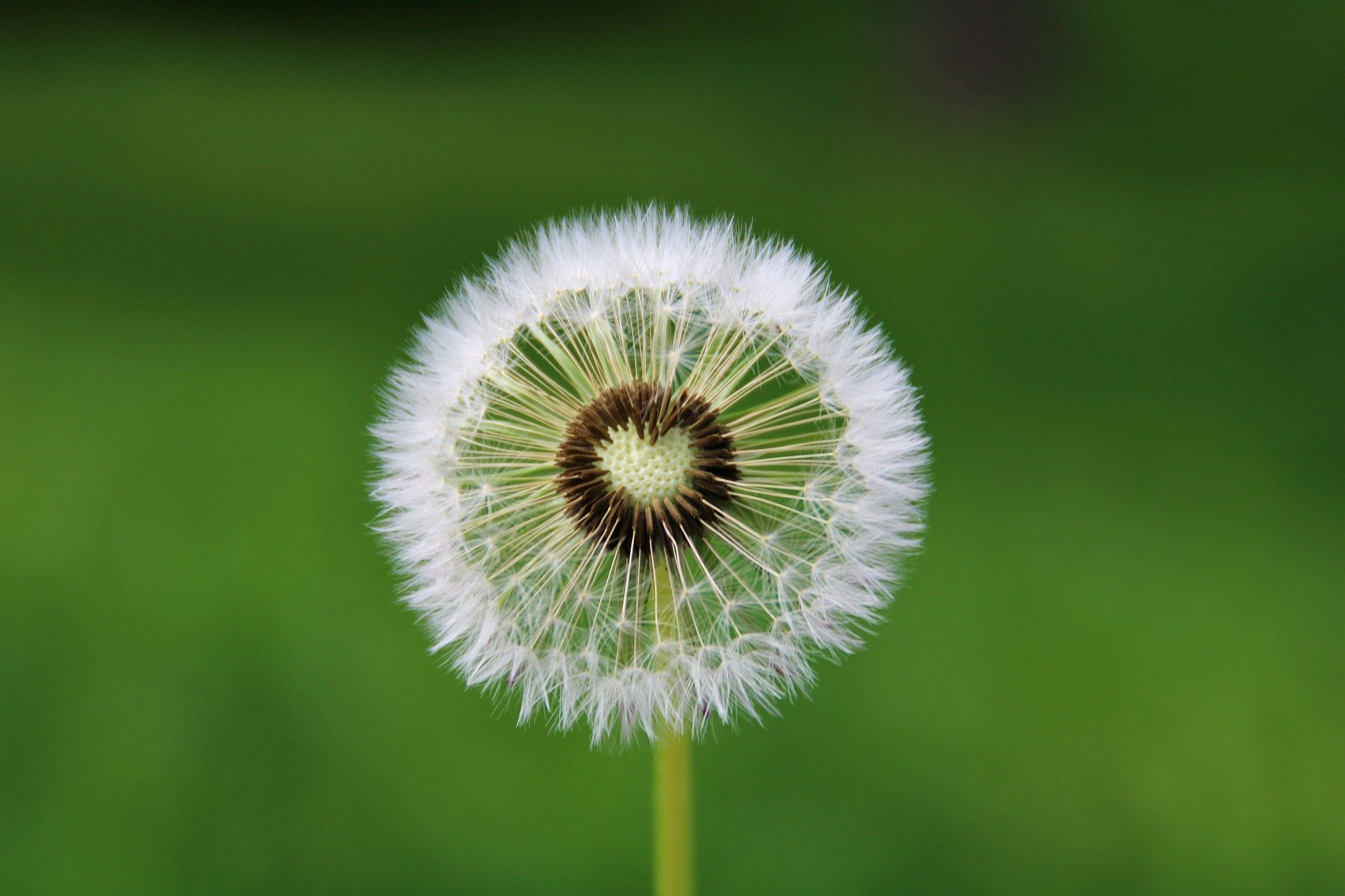 Astrid Onijs-Blog-Een andere dimensie-mentale vitaliteit-duurzame inzetbaarheid